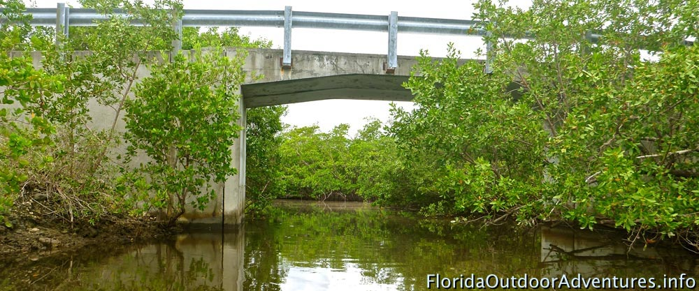 floridaoutdooradventures.info-04.jpg