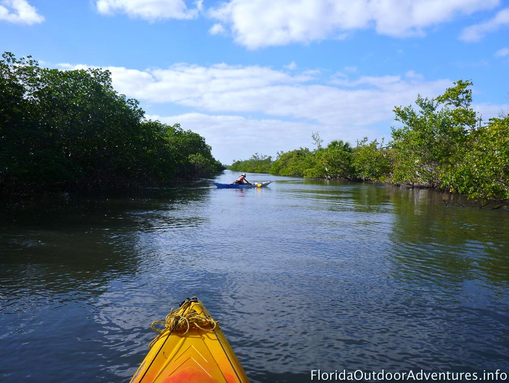 Kayaking-around-Dania-Beach-mangroves-floridaoutdooradventures.info-03.jpg