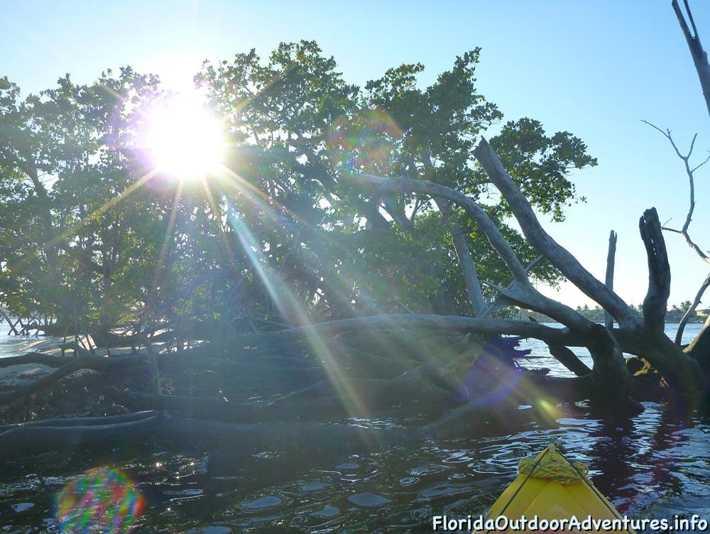 Lake-Worth-Lagoon-20121104-floridaoutdooradventures.info-07.jpg