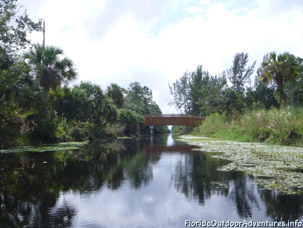 Kayaking-On-Loxahatchee-River-Under-The-Cypress-Tree-Canopy-12.jpg