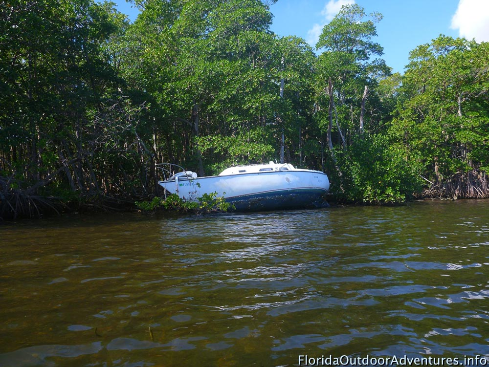 Oleta-River-State-Park-Maule-Lake-20130120O-floridaoutdooradventures.info-02.jpg