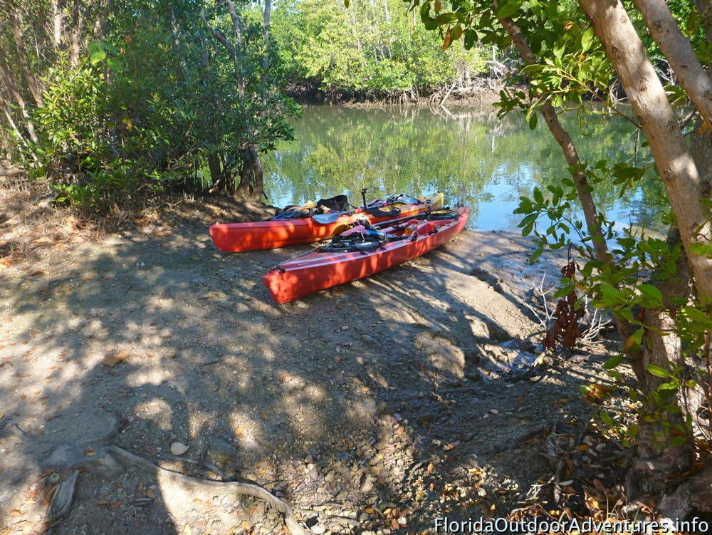 Oleta-River-State-Park-Maule-Lake-20130120O-floridaoutdooradventures.info-05.jpg