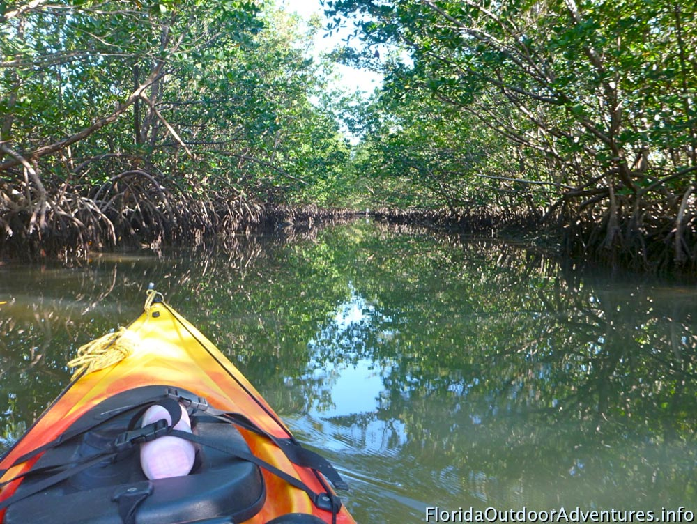 Oleta-River-State-Park-Maule-Lake-20130120O-floridaoutdooradventures.info-07.jpg