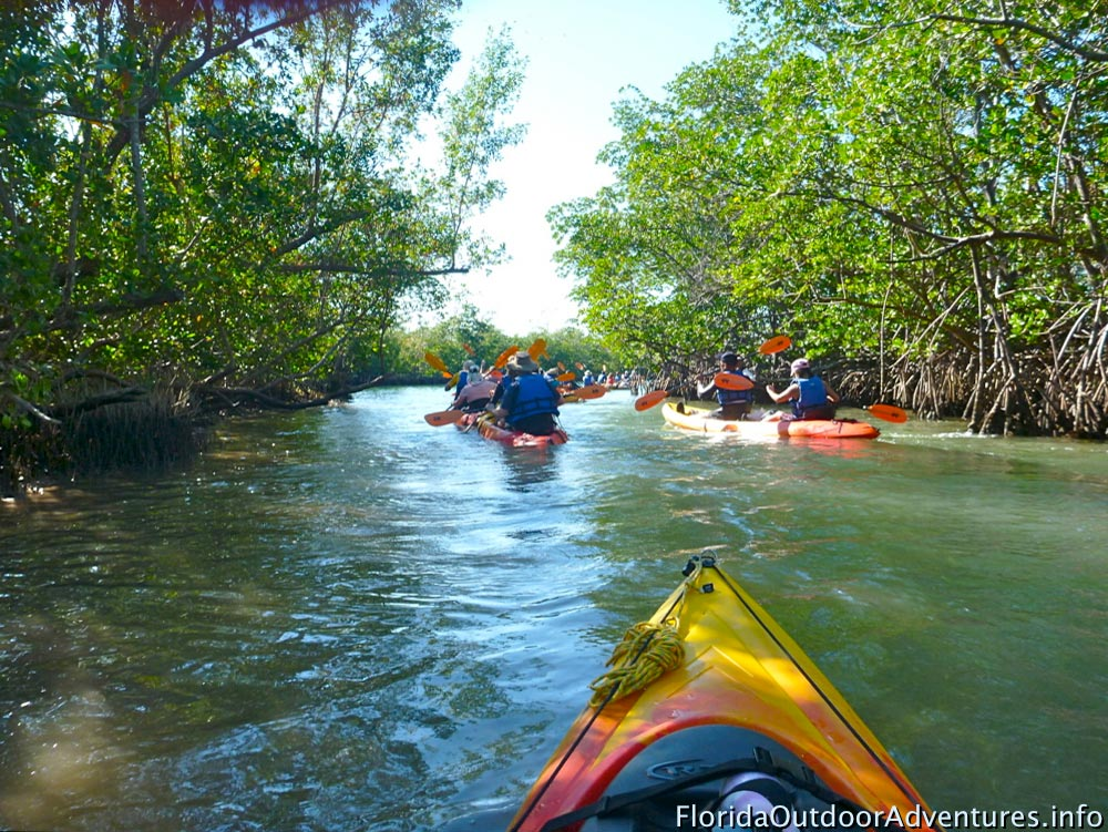 Oleta-River-State-Park-Maule-Lake-20130120O-floridaoutdooradventures.info-10.jpg