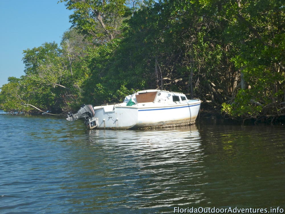 Oleta-River-State-Park-Maule-Lake-20130120O-floridaoutdooradventures.info-16.jpg