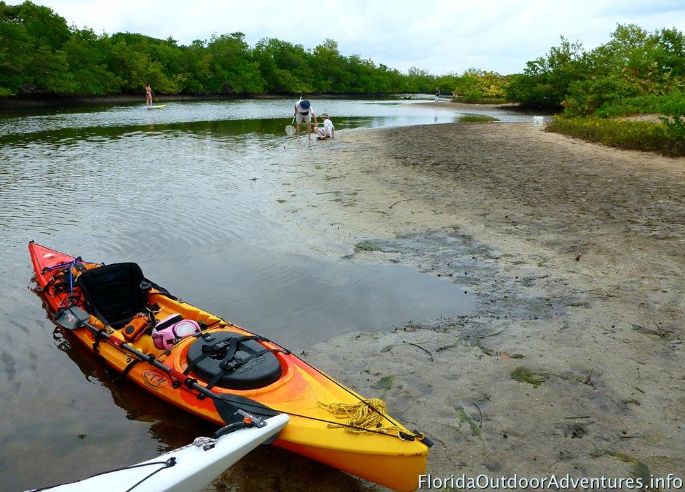 Kayaking-Whisky-Creek-floridaoutdooradventures.info-12.jpg
