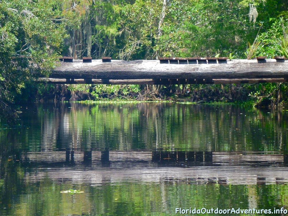 floridaoutdooradventures.info-loxahatchee-river-03.jpg