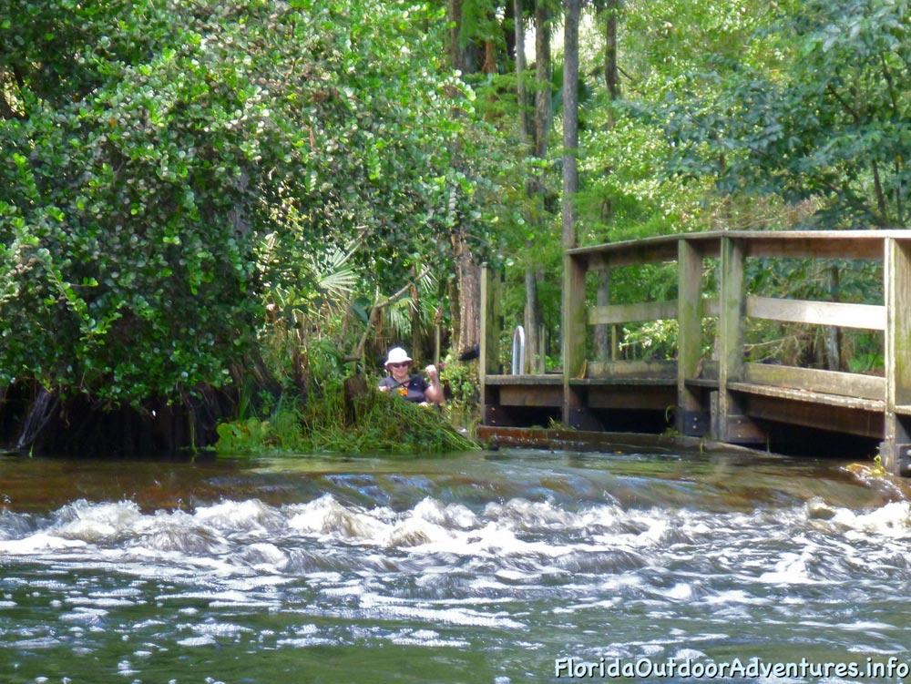 floridaoutdooradventures.info-loxahatchee-river-06.jpg