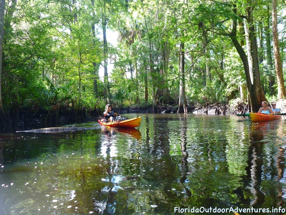 floridaoutdooradventures.info-loxahatchee-river-07.jpg