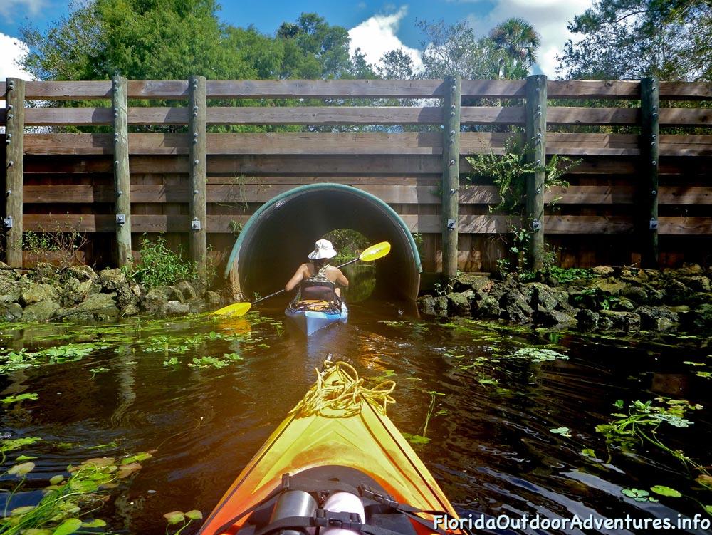 floridaoutdooradventures.info-loxahatchee-river-13.jpg