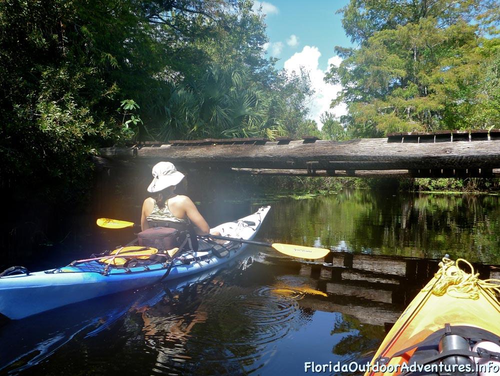 floridaoutdooradventures.info-loxahatchee-river-15.jpg