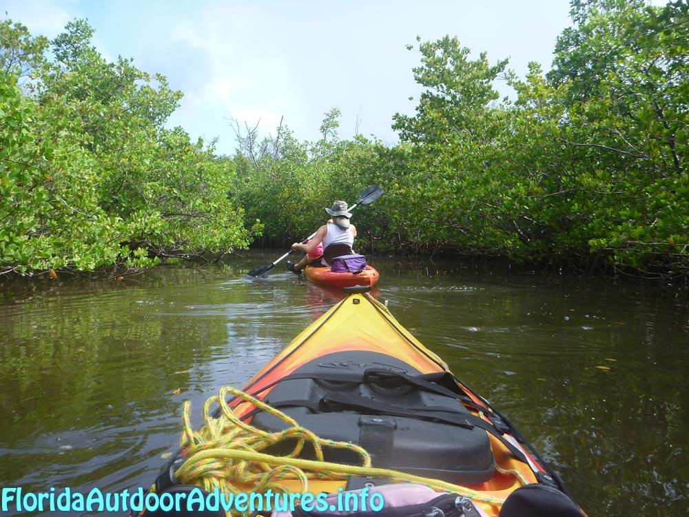 FloridaOutdoorAdventures.info-01.jpg