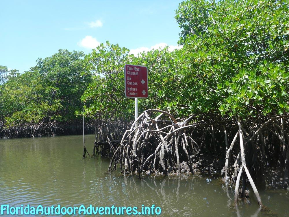 FloridaOutdoorAdventures.info-12.jpg
